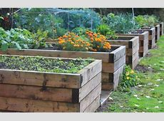 The Techniques And Benefits Of Gardening In Raised Beds