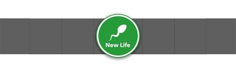 money bitlife most simulator gamezebo makes though lots tips