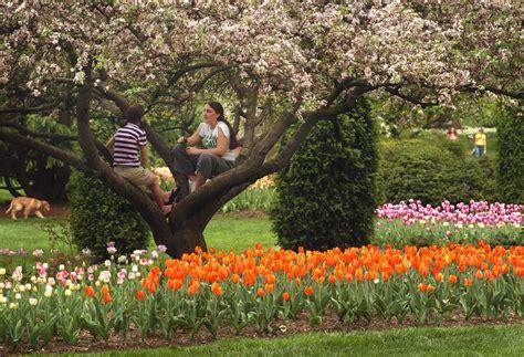 maryland garden spring blooms at sherwood gardens through the years