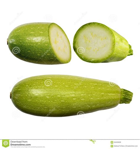 squash vegetable squash vegetable marrow isolated on white background with clipping path closeup with no