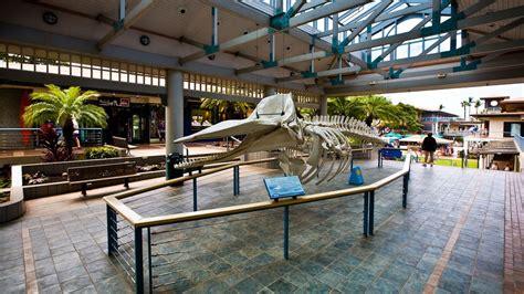 hawaii visitors and convention bureau ラハイナ旅行 ツアー 格安旅行予約ならエクスペディア