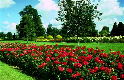 garden pictures free gardens wallpapers free garden images download