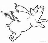 Pig Coloring Pages Flying Drawing Sheet Pigs Printable Sketch Cool2bkids Cute Adult Piglet Baby Wings Fly Drawings Animal Print Paintingvalley sketch template