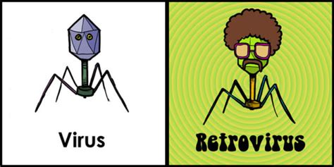 Virus Memes - science can be funny