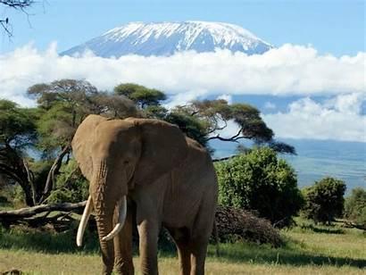 Kilimanjaro Safari Mount Wallpapergeeks Backgrounds Hdr Boat