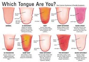piercing limba acu putten acupunctuur kruiden tongdiagnose de