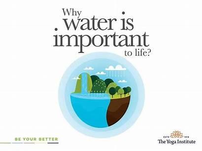 Water Importance Important Mumbai Sep
