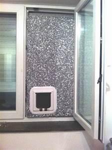 Katzenklappe Für Fenster : tierfreunde rheinland e v forum thema anzeigen katzenklappe in mietwohnung ~ Eleganceandgraceweddings.com Haus und Dekorationen
