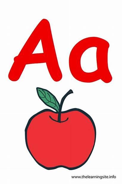Letter Alphabet Apple Flashcard Toddlers Nursery Story