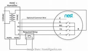 Nest Thermostat Wiring Diagram 8 Wire Nice With 8 Wires