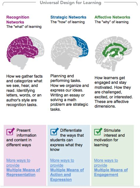 universal design for learning udl and the flipped classroom the picture user