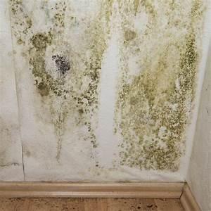 lutter contre l39humidite d39un mur marie claire With traiter l humidite dans une maison