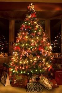 Weihnachtsbaum Mit Lichterkette : weihnachtsbaum festlich schm cken spa f r die ganze ~ A.2002-acura-tl-radio.info Haus und Dekorationen