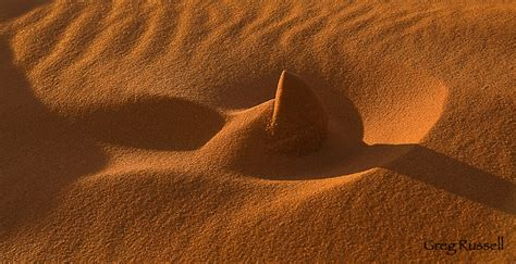 Coral Pink Sand Dunes State Park Photography by Greg Russell
