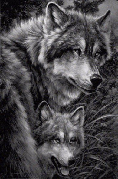 inspired admired inspired  wolves  beautiful