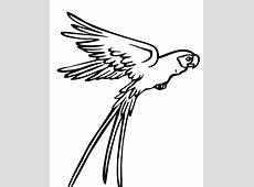 Sketsa Tattoo Burung Hantu Die Bilder Coleection
