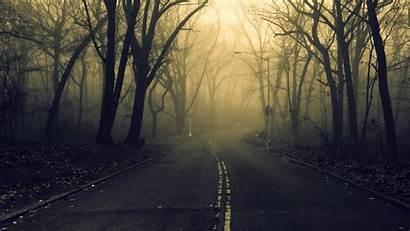 Misty Spooky Forest Road Wallpapers Desktop Nature