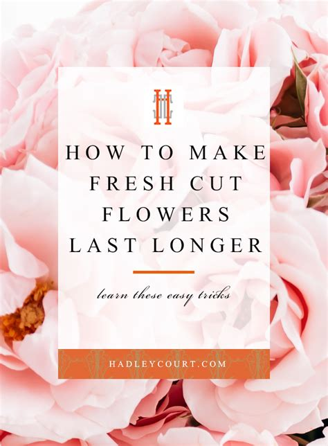 Make Cut Flowers Last Longer by How To Make Your Fresh Cut Flowers Last Longer Hadley