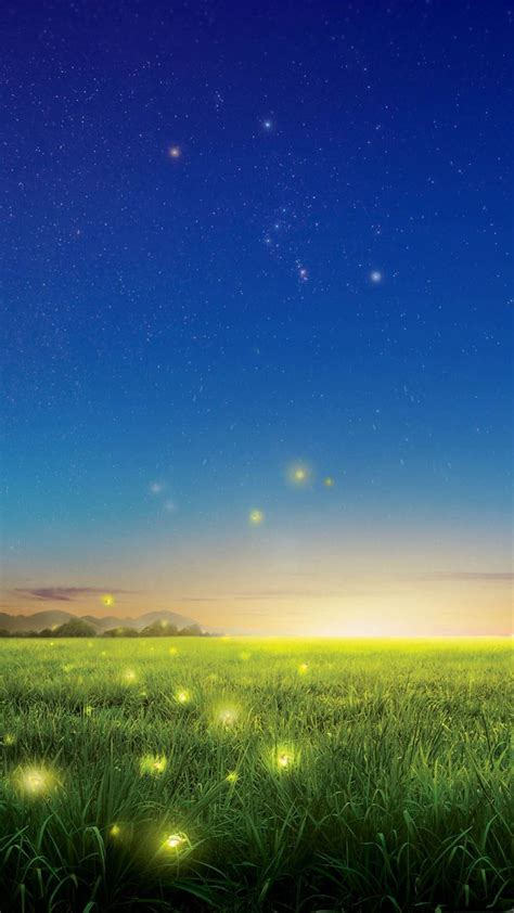 fireflies country field fantasy light android wallpaper