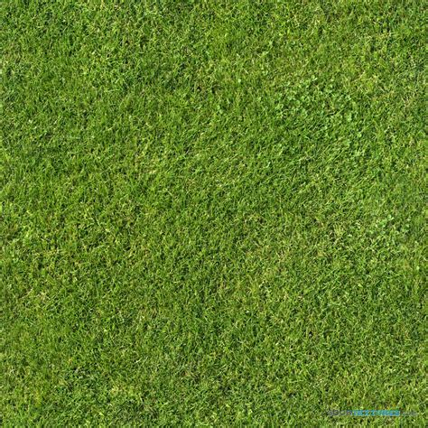 wall color seamless grass textures