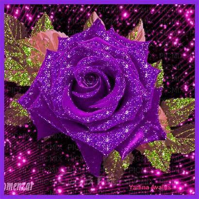 Flowers Cynthia Salvo Ak0 Rosas