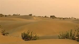 Thar Desert Rajasthan - Activities & Attractions of Thar ...