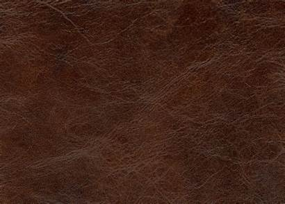 Leather Swatch English Chocolate Swatches Ethan Allen