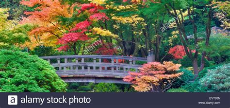 japanese garden portland fall colors images