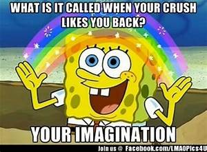 When Your Crush Likes You Back Funny Pictures Meme Jokes