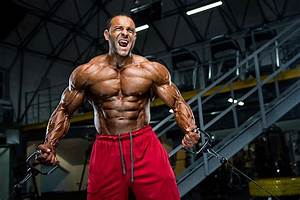 Royalty Free Body Building Pictures  Images And Stock Photos