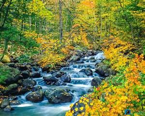 Most Beautiful Stunning Nature Photography | Tufing.com