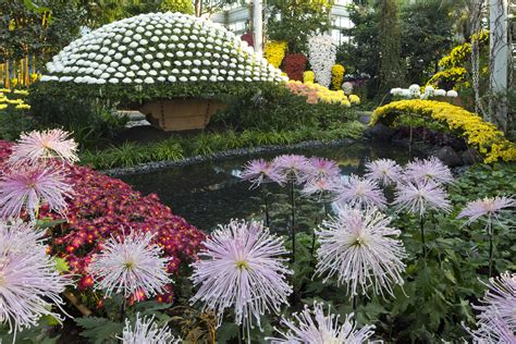 botanic garden new york new york botanical garden guide including exhibitions and