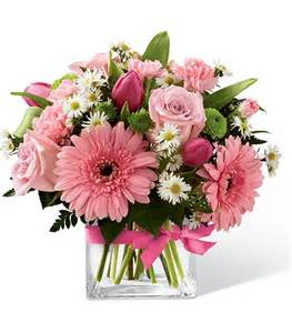 carnations flowers hospital flowers for