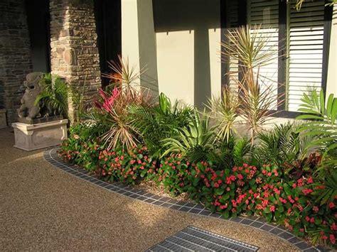 townsville garden suzan quigg