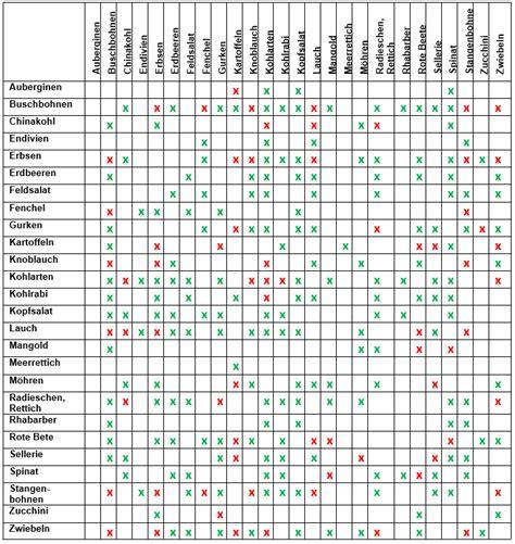 welche pflanzen vertragen sich tabelle fruchtfolge gem 252 se tabelle welches gem se nebeneinander pflanzen g rten gem se