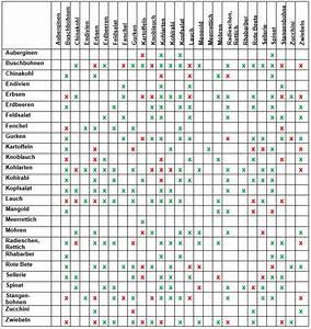 Wann Welches Gemüse Pflanzen Tabelle : welche pflanzen vertragen sich tabelle die besten 17 ideen zu mischkultur auf pinterest ~ Frokenaadalensverden.com Haus und Dekorationen