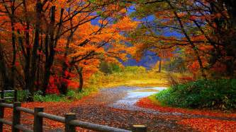 Halloween City Idaho Falls by Autumn Tree In Fall Hd Desktop Wallpaper Background Download
