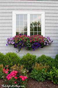 flower boxes for windows window boxes Archives - The Lilypad Cottage