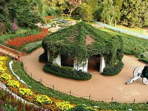 flower world cup at Ooty annual show