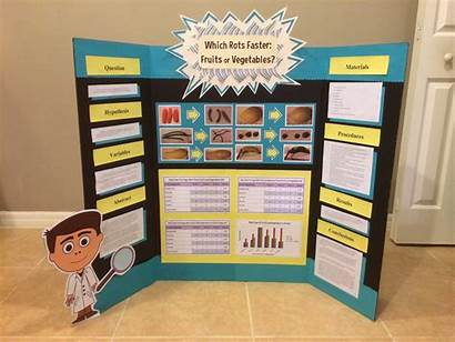Science Fair Projects Project Middle Display Board