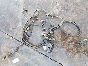 Caterpillar C7 Wiring Harness For A 2006 Freightliner M2