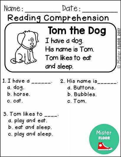 Reading Worksheets Comprehension Sight Kindergarten Practice Word