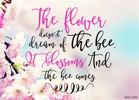 quote   week  flower doesnt dream   bee