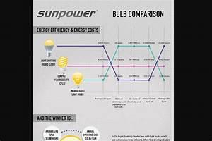 Led Bulb Comparison Infographic