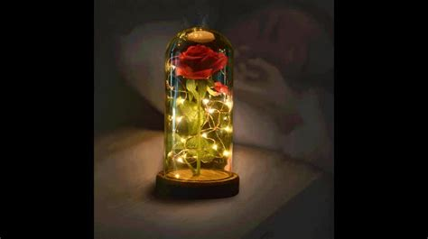 Products 2018 Beauty And The Beast Rose Wholesale