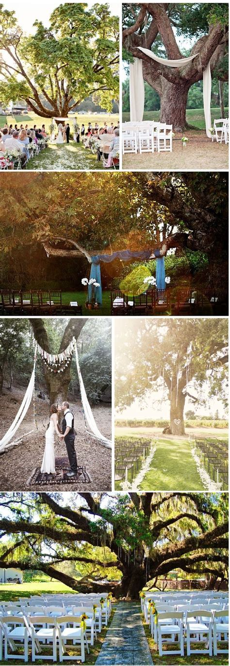1000 Ideas About Outdoor Tree Decorations On Pinterest