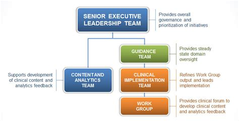 organizational structure  healthcare analytics