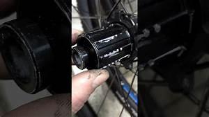 Hub From Bontrager Rear Mtb Wheel