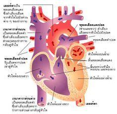 nursing abdominal pain activities