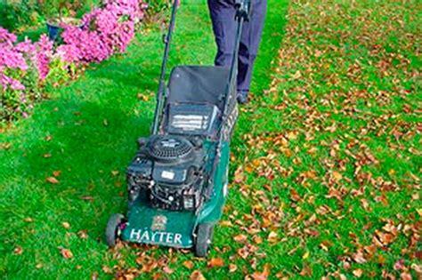 concimazione tappeto erboso concimazione taglio e pratiche colturali kb giardino